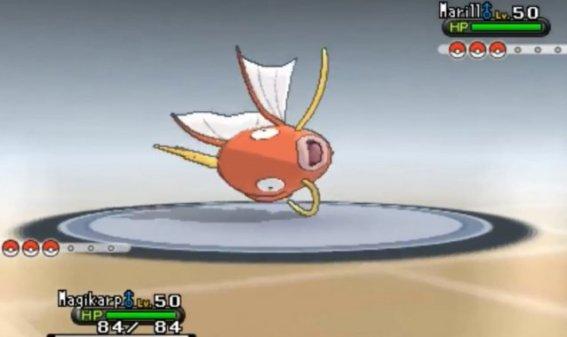 fish plays pokemon fish dies
